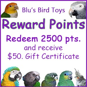 Parrot Rewards Points - $50.00