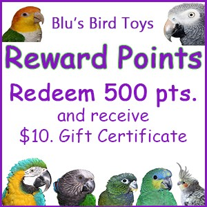 Parrot Rewards Points - $10.00